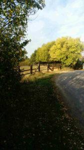Chemin de la perrine 4